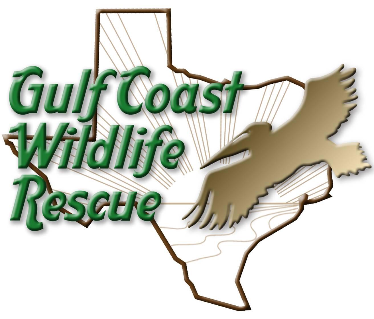 Gulf Coast Wild Rescue